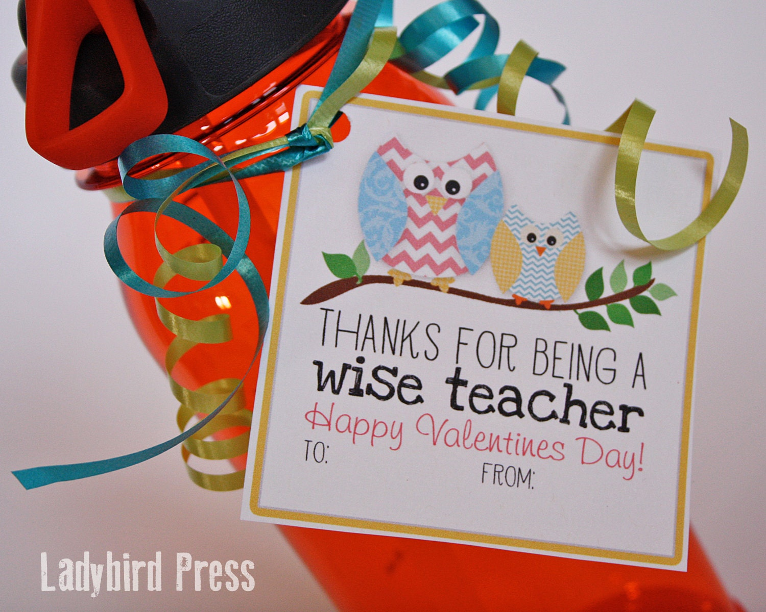 Wild image in printable valentine cards for teacher