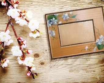 Springtime White Violets hand painted picture frame