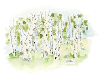 Watercolour Birch Grove 3 Print