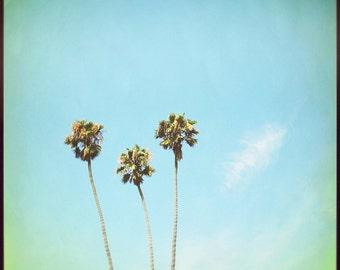 Palm tree photo, California photography, Palm trees, Wall print, sky blue, aqua blue