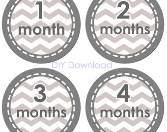 Instant Download- Grey Chevron Birthday Monthly Stickers plus a Just Born