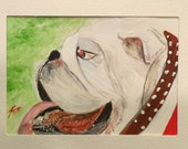 Bulldawg  on Green Background- ACEO Original Painting - Miniature - Last day at this SALE price