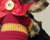 Chief's sweater for the Furrbaby