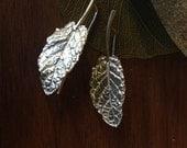 Fresh Mint Earrings in Sterling Silver, Garden Mint Earrings