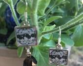 STS9 Stone Dangle Earrings