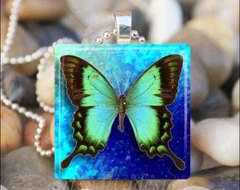 BEAUTIFUL BUTTERFLY Blue Spring Summer Garden Glass Tile Pendant Necklace Keyring