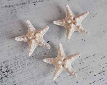 Stocking Stuffer - Beach Magnets - Starfish Magnet - nautical magnets - cute magnets - fridge magnets - hawaii magnets