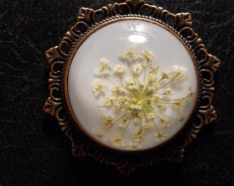 Delicate White Queen Annes Lace Preserved Specimen Necklace