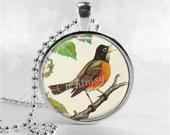 ROBIN Necklace, Robin Pendant, Robin Jewelry, Robin Bird, Robin Charm, Glass Photo Art Necklace, Bird Necklace