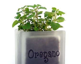 Cute herb pot planter glass block