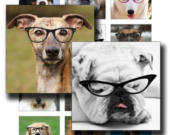 Dogs In Specs Digital Collage Sheet 2 inch squares instant download funny images of dogs to use for pendants