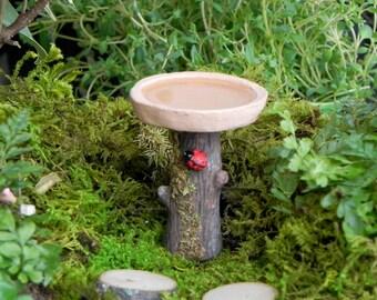 Fairy Garden accessories  Birdbath with ladybug and water effect miniature bird bath terrarium