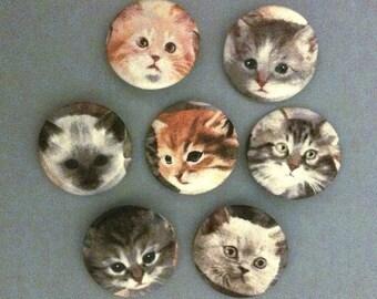 Cute Kitten Faces - Fabric PIN BACK BUTTON Set
