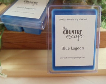Blue Lagoon Scented 100% Soy Wax Melt - A Woody and Smooth Musk Scent- Maximum Scented