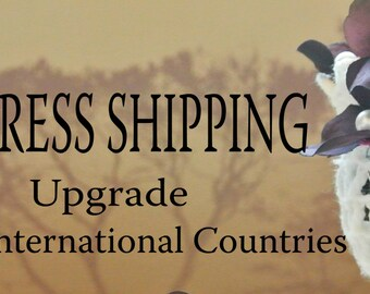 Express Shipping Upgrade for International Countries