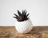 Small handmade ceramic succulent planter- white- flower pot- planter for flowers- air planter