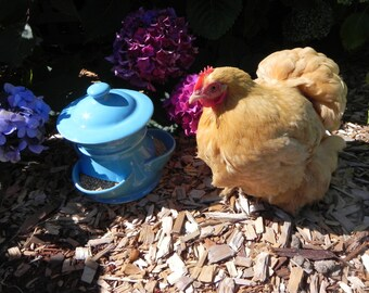 Ceramic Chicken Feeder (size small) *limited edition*