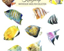 Watercolor Angel Fish Collection - Commercial and Personal Use