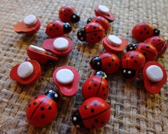 20 Self Adhesive Mini Wooden Lady Bugs