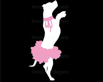 The original 'Bullerina' (Pit bull in a tutu)