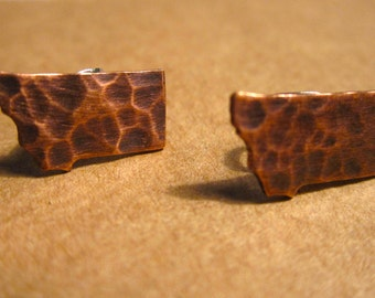 Small Hammered Montana Silhouette Post Earrings CHOOSE YOUR METAL