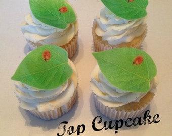 Ladybug On A Leaf Edible Cupcake Toppers