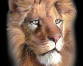 African Lion Head Portrait T SHIRT   Item no. 296