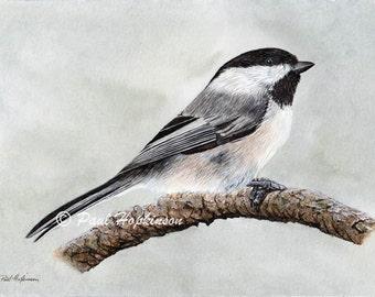 Bird Watercolour, Original Painting, Chickadee Watercolor, Bird Artwork, Garden Birds