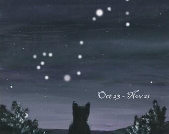 Kitty watching the Stars - Scorpio
