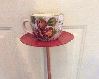 Cup &Saucer bird feeder and Bath