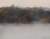 Early Morning on Malden Lake II, Landscape Photography, Mist on Lake, Borderless Prints