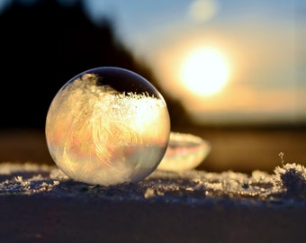 8x10 Frozen Bubbles in the Rising Sun