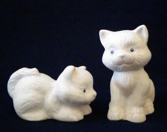 Cutest White Kittens Salt and Pepper Shaker