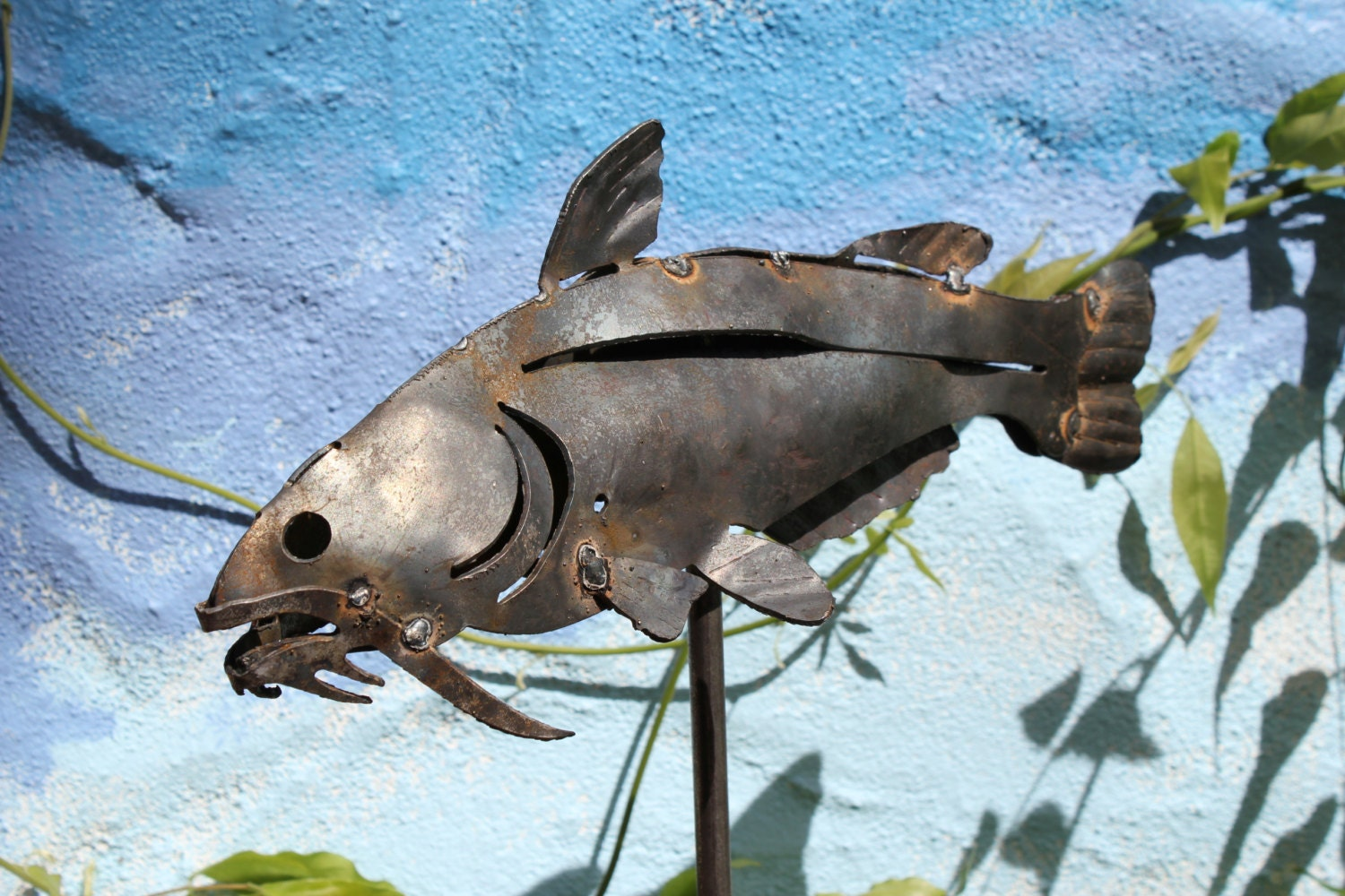 Catfish Art