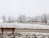 Winter Landscape, Frost Art, Home Decor, White, Frozen lake, Brown, Nature Photograph, Winter Photography, Trees, Bench - Winter white