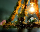 Hanging Pendant Cage Light Fixture Moss Flowers Modern Custom Lighting Shabby Chic Cottage Bedroom Children's Kitchen Dining MySecretLite