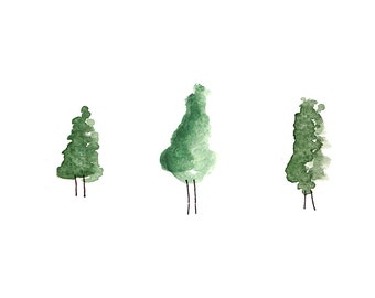 Watercolour tree illustration.