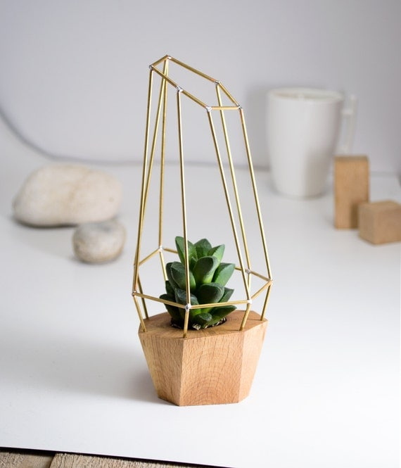 Modern faceted geometric planter for air plant succulent for Wooden cactus planter