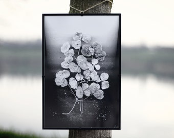 whiteINblack-four-leaf clover-Print photographic Subject.
