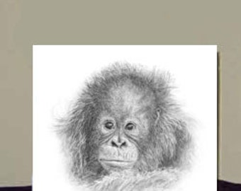 Baby Orangutan ~  Fine Art Greetings Card