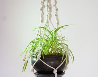 Knotted Macrame Plant Hanging