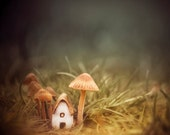 Fairy Garden Art, Mushroom Photo, Tiny House Art, Cute Cottage Decor, Enchanted Forest Photography, Brown and Green