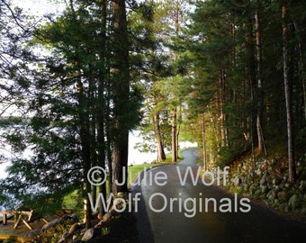 Winding road through pine trees leading to a beautiful lake photograph Wisconsin