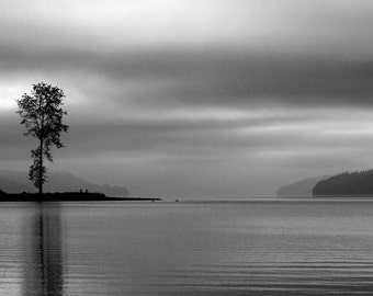 Landscape Photography, Hood Canal, Fog, Lone Tree, Potlatch State Park, Winter, Fine Art Black and White Photography, Wall Art, Home Decor
