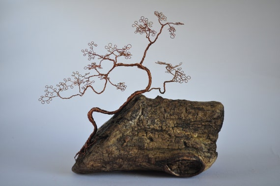 css draht bonsai baum baum und dr hte bonzai tree driftwood. Black Bedroom Furniture Sets. Home Design Ideas