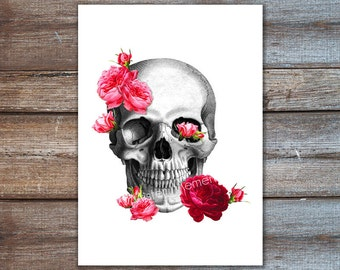 skull with roses - skull art - anatomy