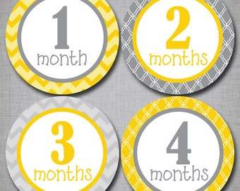 Baby Monthly Stickers Milestone Monthly Stickers Neutral Stickers Month by Month [N005]