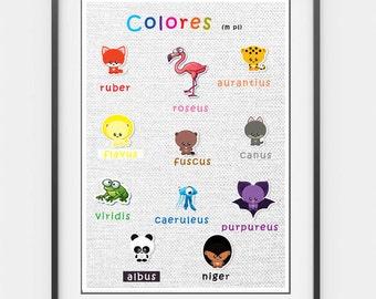 Printable Latin Colours Poster