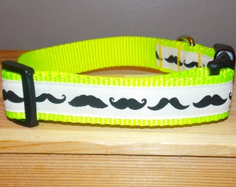 Mustache Dog Collar/ I Mustache You A Question Dog Collar
