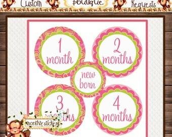 Pink Pasily Monthly Baby Milestone Stickers Baby Girl One-Piece Baby Stickers Monthly Baby Stickers Baby Month Stickers  {M120}